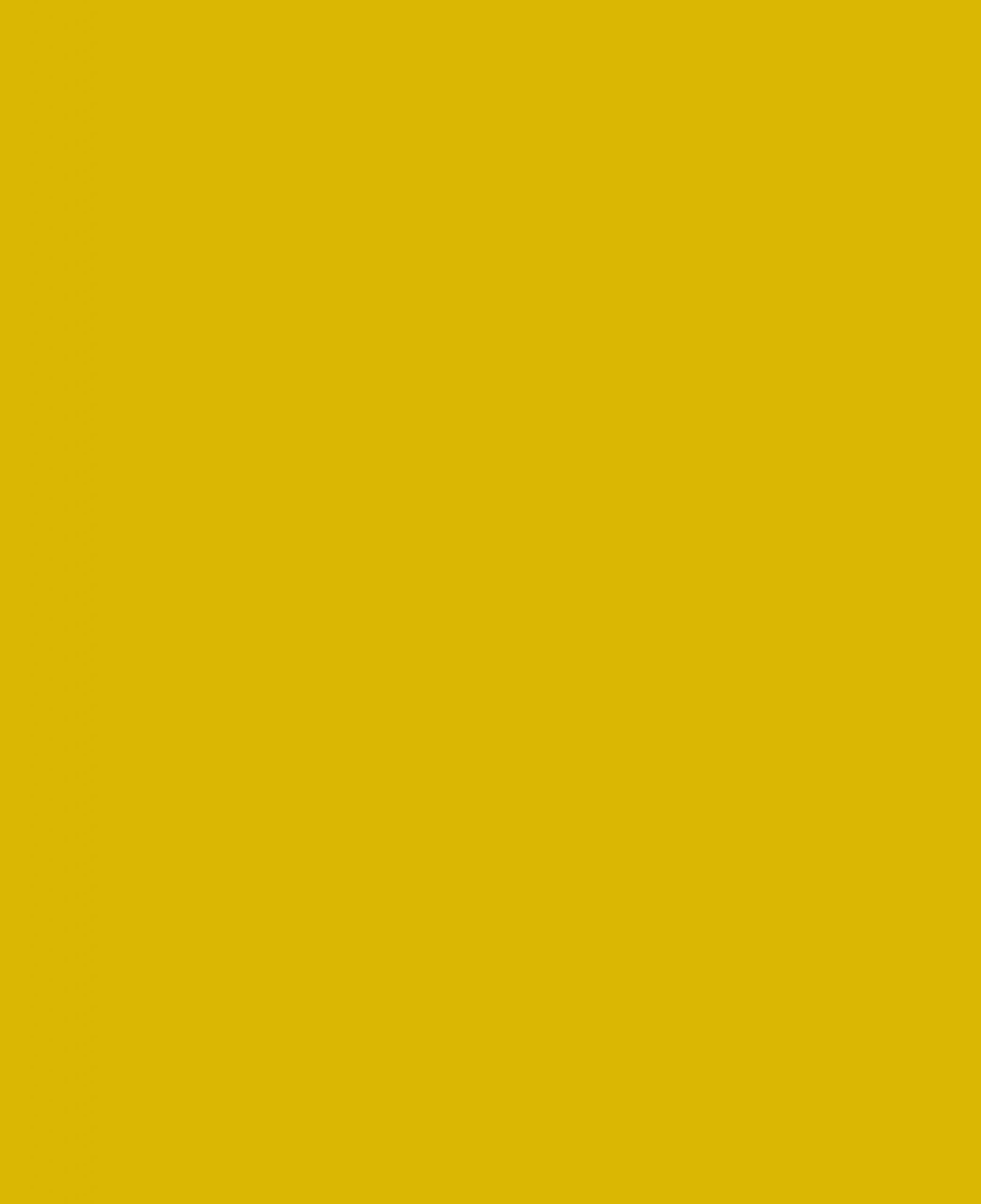 werkenalscommissaris_algemeneafbeelding_artikelen_geel